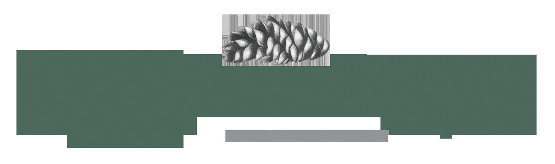 Katelynn Nangle Design